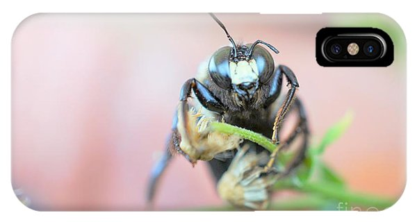 Bee Busy IPhone Case