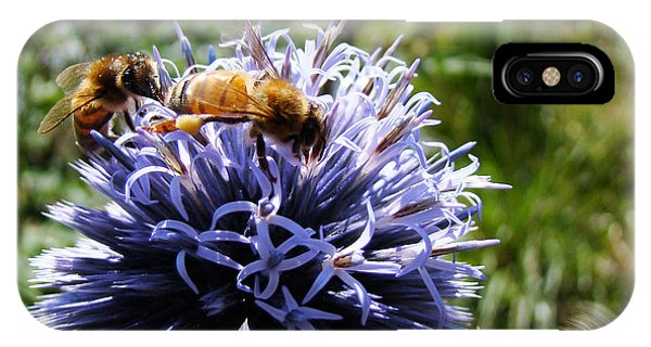 Bee Circles IPhone Case