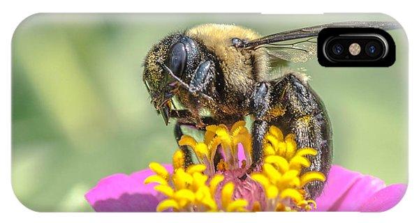 Bee Dream IPhone Case