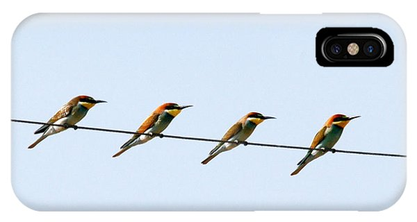 Bee Eaters On A Witre  IPhone Case