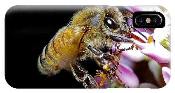 Bee Feeding IPhone Case