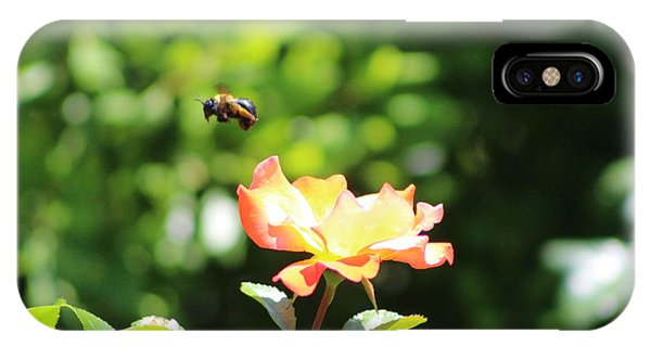 Bee Flying From Peach Petal Rose IPhone Case