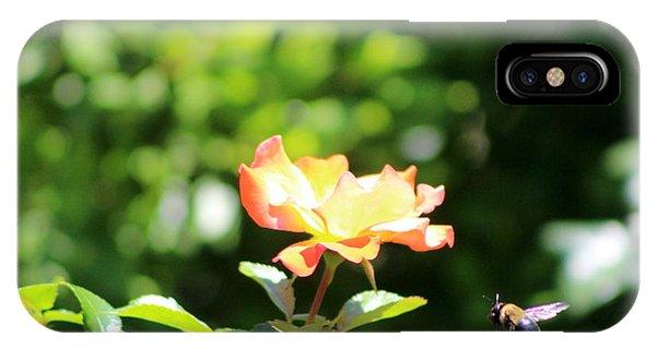 Atomic Tangerine iPhone Case - Bee Flying To Atomic Tangerine Rose by Colleen Cornelius