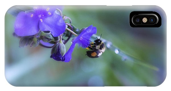Rights Managed Images iPhone Case - Bee Harmony by Mary Lou Chmura