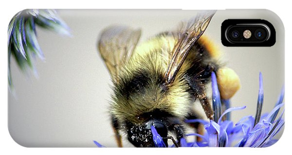Honeybee iPhone X Case - Bee In A Bubble by Sharon Talson