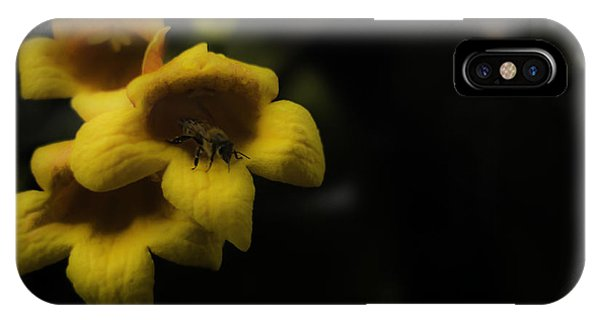 Bee In A Trumpet IPhone Case