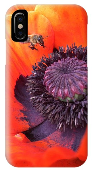 iPhone X Case - Bee Is Visiting A Poppy by Orphelia Aristal