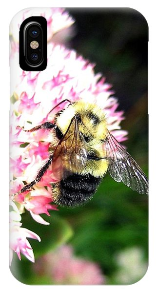 Honeybee iPhone X Case - Bee-line 2 by Will Borden