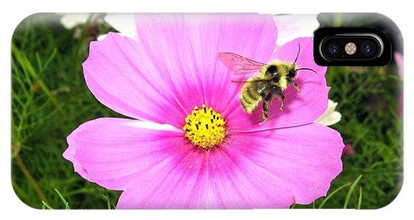 Honeybee iPhone X Case - Bee-line 6 by Will Borden