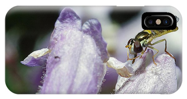 Bee Mimic On Iris IPhone Case