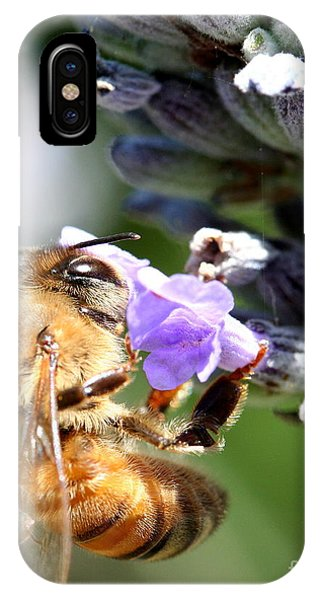 Honeybee iPhone X Case - Bee On Flower . R7124 by Wingsdomain Art and Photography