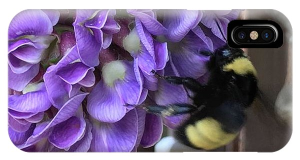 Bee On Native Wisteria IPhone Case