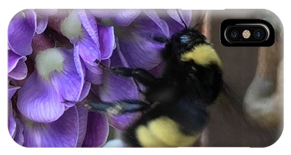 Bee On Native Wisteria I IPhone Case
