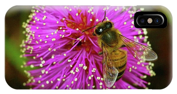 Bee On Puff Ball IPhone Case