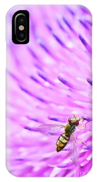 Sweat Bee On Thistle IPhone Case