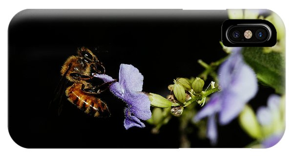 Bee Portrait IPhone Case