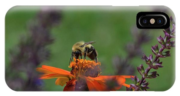 Bee Shot  IPhone Case