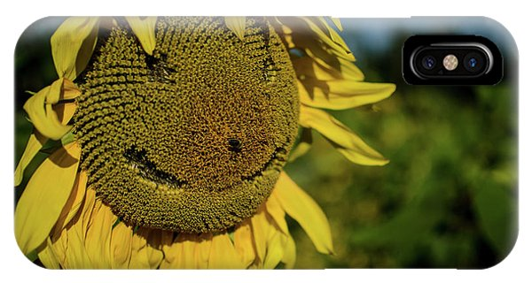 Bee Smiling Sunflowers IPhone Case