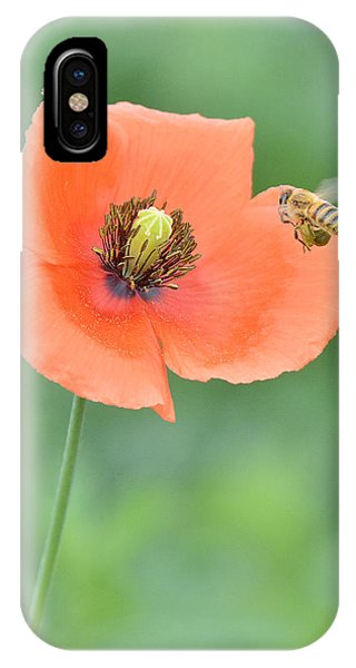 Bee To Poppy IPhone Case
