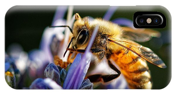 Bee Visits Rosemary  IPhone Case