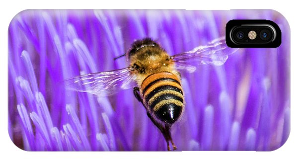Honeybee iPhone X Case - Bee With Artichoke Bloom by Brian Tada