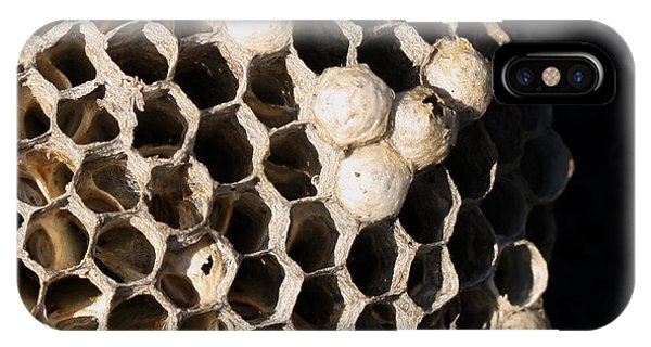 Bee's Nest IPhone Case