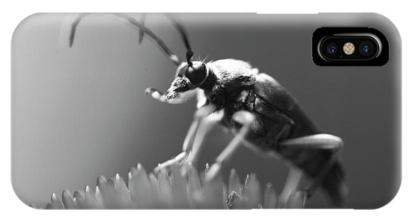Beetle In Black And White IPhone Case