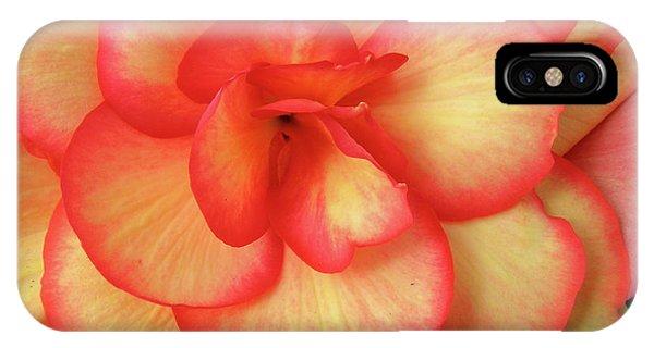 Begonia No. 1 IPhone Case