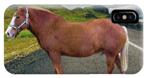 Belgian Horse IPhone Case