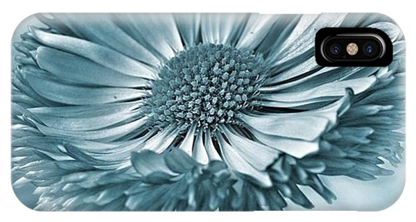 Bellis In Cyan  #flower #flowers IPhone Case