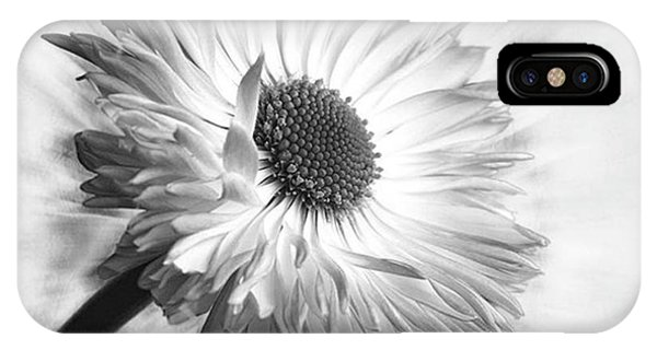 Love iPhone Case - Bellis In Mono  #flower #flowers by John Edwards