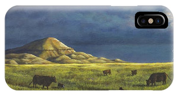 Belt Butte Spring IPhone Case