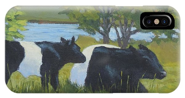 Belted Galloway And Calf IPhone Case