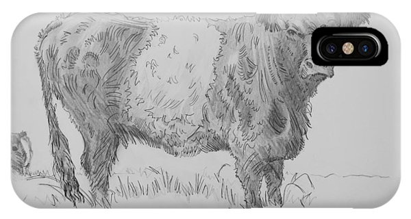 Belted Galloway Cow Pencil Drawing IPhone Case