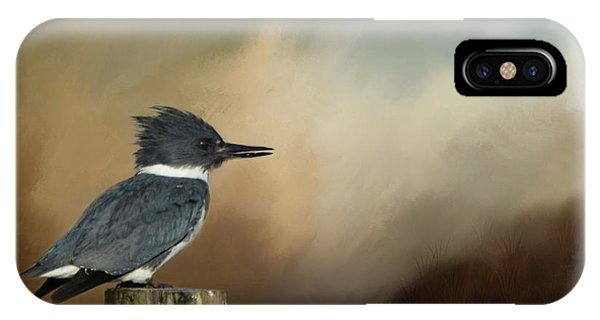 Wakulla iPhone Case - Belted Kingfisher At Dusk by Carla Parris