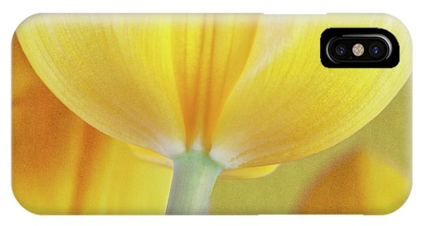Bloom iPhone Case - Beneath The Yellow Tulip by Tom Mc Nemar