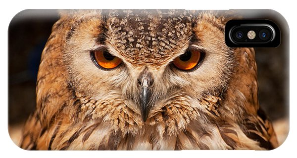 Bengal Owl IPhone Case