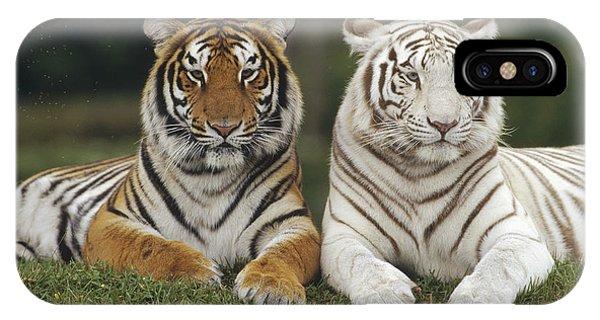 Bengal Tiger Team IPhone Case