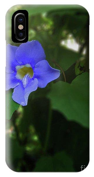 Bengal Trumpet Flower Blue Tones IPhone Case