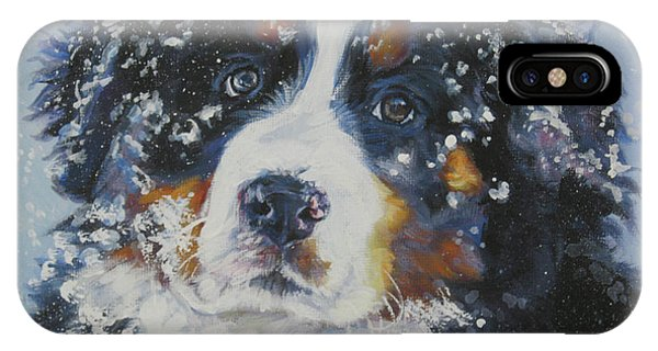 Bernese Mountain Dog Puppy IPhone Case