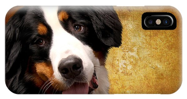 Bernese Mountain Dog iPhone Case - Bernese Mountain Dog by Smart Aviation