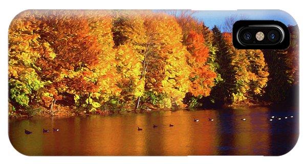 Bernharts Dam Fall 008 IPhone Case