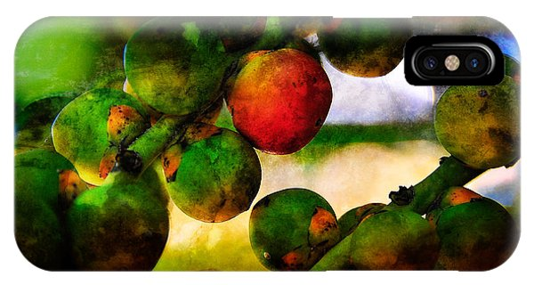 IPhone Case featuring the photograph Berries by Harry Spitz