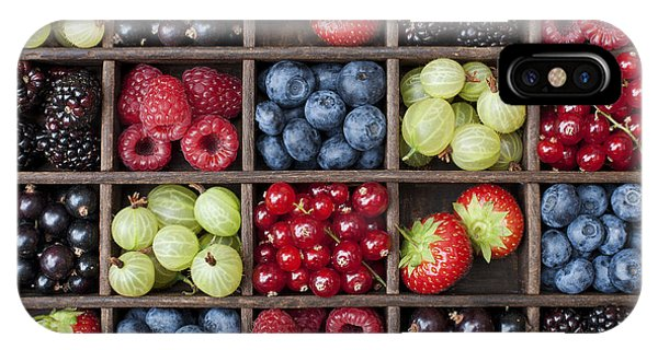 Berry Harvest IPhone Case