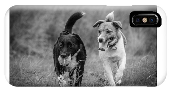 IPhone Case featuring the photograph Best Buddies by Nick Bywater
