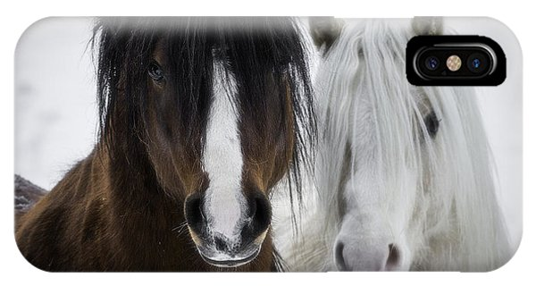White Horse iPhone Case - Best Friends II by Everet Regal
