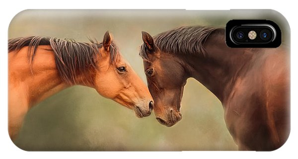 Best Friends - Two Horses IPhone Case