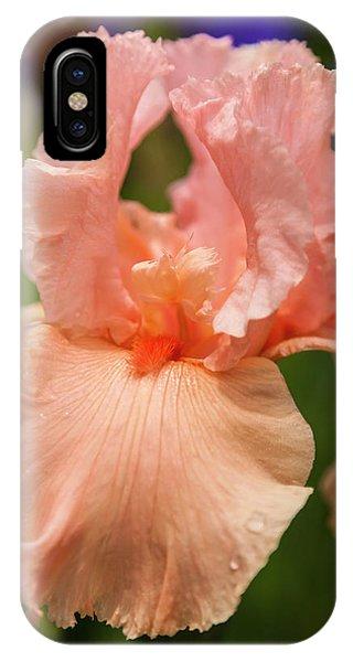 Beverly Sills Iris, 2 IPhone Case