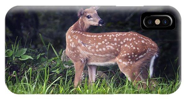 Big Bambi IPhone Case