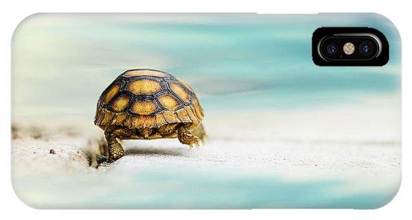 Turtle iPhone X Case - Big Big World by Laura Fasulo